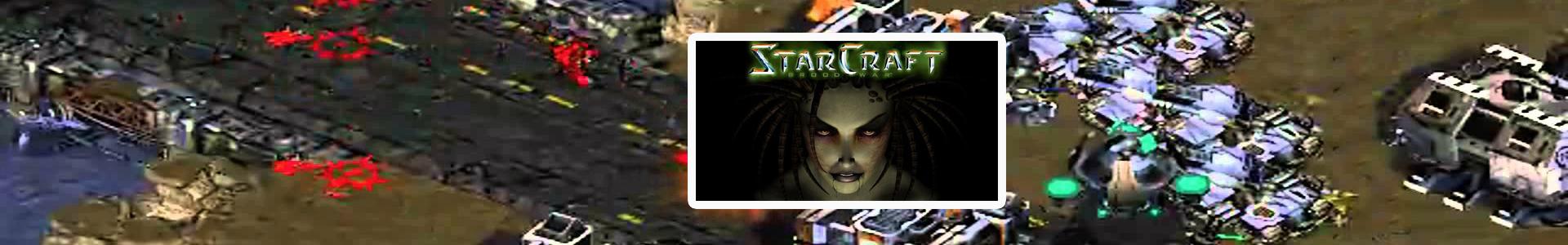 starcraft brood war stats
